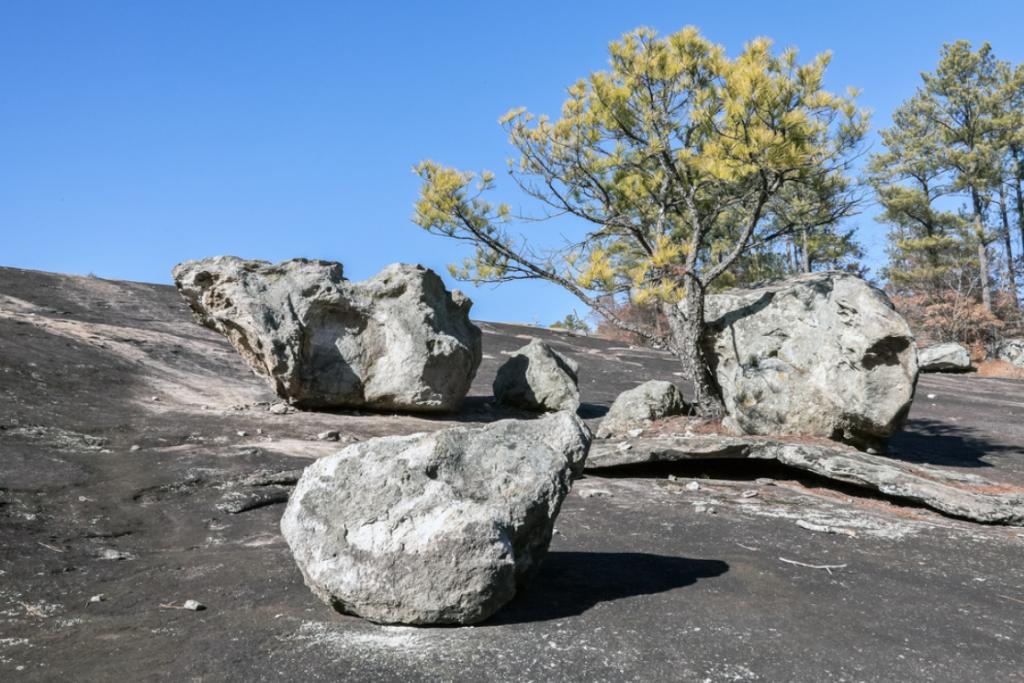 Arabia Mountain rocks